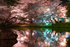 Cherry blossoms and Hirosaki Park Royalty Free Stock Images