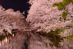 Cherry blossoms and Hirosaki Park Royalty Free Stock Photos