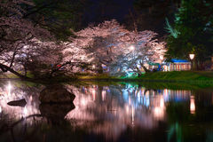 Cherry blossoms and Hirosaki Park Stock Image