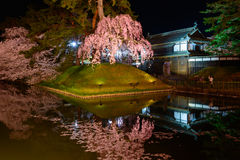 Cherry blossoms and Hirosaki Park Royalty Free Stock Photography