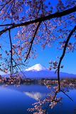 Cherry blossoms and inverted Mt. Fuji with blue sky from `Ubuyagasaki` stock photo