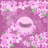 Cherry blossoms royalty free illustration