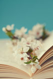 Cherry blossoms and old book on turquoise background, beautiful spring flower, vintage card Stock Photography