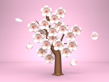 Cherry Blossoms On Pink Background Stock Images