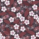 Cherry blossoms. Seamless floral pattern. Spring  backgrou Stock Photography