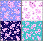 Cherry blossoms seamless patterns Stock Photos