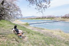 Cherry Blossoms at Sendai Stock Images