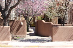 Cherry Blossoms. In the spring in Santa fe Stock Images