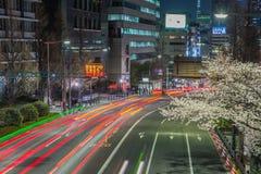 Cherry blossoms street at night Stock Photos
