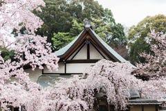 Cherry Blossoms Surround un templo en Nara fotos de archivo