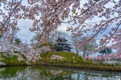 Takada Sakura cherry blossoms castles stock photo