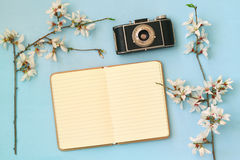 Cherry blossoms tree, open blank notebook and old camera Royalty Free Stock Image