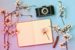 Cherry blossoms tree, open blank notebook and old camera Royalty Free Stock Photography