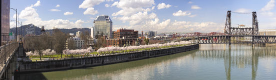 Cherry Blossom Along Portland Oregon Waterfront Panorama Stock Photo