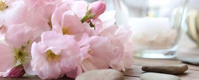 Cherry Blossoms and Wellness. Cherry Blossoms (Sakura) in a vase, stones and a Candle in the background on a wooden table Stock Images