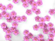 Cherry Blossoms On White Background royalty illustrazione gratis