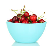 Cherry in a blue bowl Stock Image