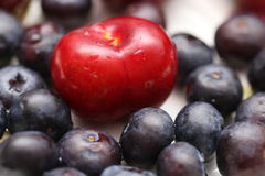 Cherry & blueberry Royalty Free Stock Photo
