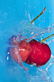 Cherry Boom 2 Royalty Free Stock Photography