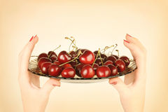Cherry bowl in hand. Royalty Free Stock Image