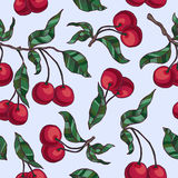 Cherry branch with cherries and leaves. Vector hand drawn cherry branch with cherries and leaves. seamless pattern Royalty Free Stock Images