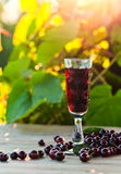 Cherry brandy Royalty Free Stock Image