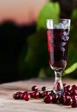 Cherry brandy Royalty Free Stock Photos