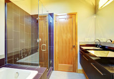 Cherry brown bathroom interior with glass screened shower, cabin. Ets and tub Stock Images