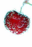 Cherry bubbles Royalty Free Stock Photography