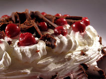 Cherry cake. With chocolate and cream close up Royalty Free Stock Photo