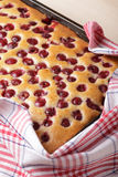 Cherry cake Stock Image
