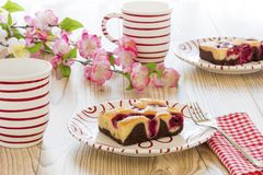 Cherry cake with coffee. And cherry blossoms Royalty Free Stock Photography