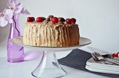 Cherry cake with duo chocolate Stock Images
