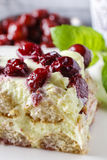 Cherry cake with lady finger biscuits Royalty Free Stock Image