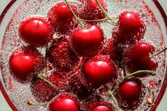 Cherries in champagne. The view from the top. royalty free stock image