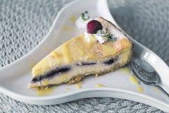 Cherry cheesecake. Stock Images