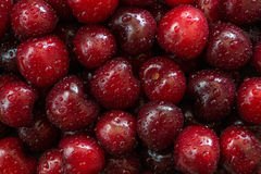 Cherry. Cherries background with drops stock photography