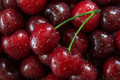 Cherry. Cherries background with drops stock photos