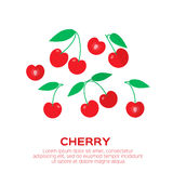 Cherry. Cherry berry with leaves. Royalty Free Stock Photography