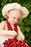 Cherry child Stock Photography