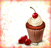 Cherry chocolate cupcake Royalty Free Stock Photos