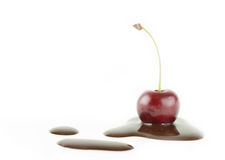 Cherry in chocolate. A cherry and chocolate isolated on white background Royalty Free Stock Images