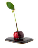 Cherry in a chocolate Stock Photography
