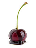 Cherry in a chocolate Royalty Free Stock Photo