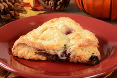 Cherry chocoloate chip turnovers Royalty Free Stock Photo