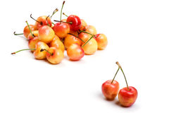 Cherry close up Stock Image
