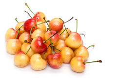 Cherry close up Stock Images