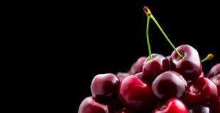 Cherry closeup. Organic ripe cherries on black. Background royalty free stock image