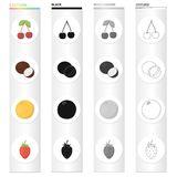 Cherry, coconut flesh, delicious fruit orange, strawberry berry. Fruits set collection icons in cartoon black monochrome Royalty Free Stock Photos