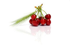 Cherry concept Royalty Free Stock Image